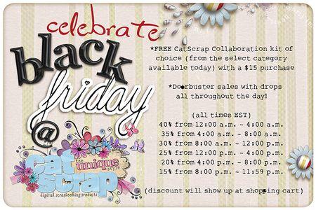 Ca black friday sale 2010